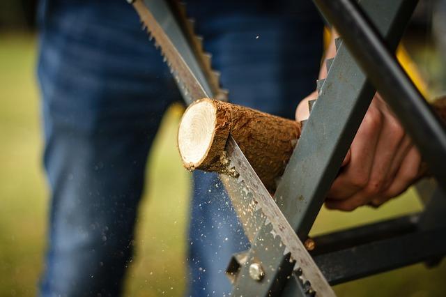 pila na dřevo